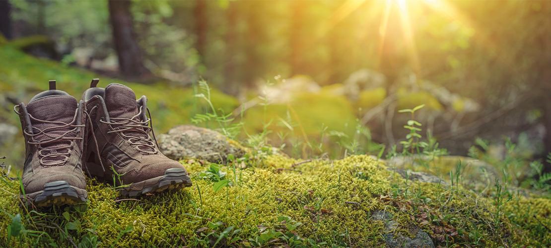 Wanderschuhe auf dem Waldboden